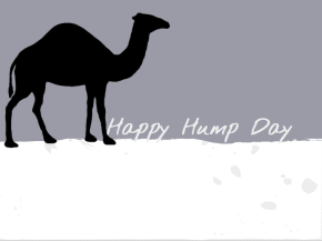 Hump Day: May 29th