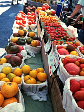 New Brunswick Farmer's Market
