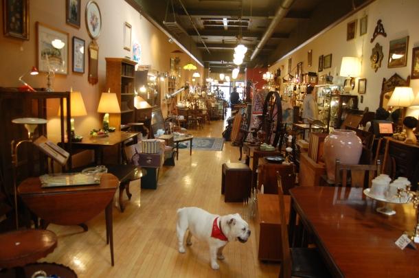 Storescape w Roxy